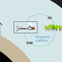 Biogenic carbon Vs. geologic carbon graphic