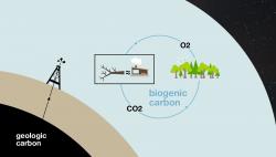 Biogenic carbon Vs. geologic carbon graphic